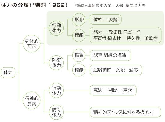 kenko_20110711.jpg