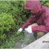 除草と虫除け-サムネイル