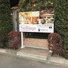 レストラン『ソルフェージュ』の案内板-サムネイル