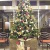 クリスマスツリー-サムネイル