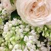 今週のお花「ライラックとスプレーバラ」-サムネイル