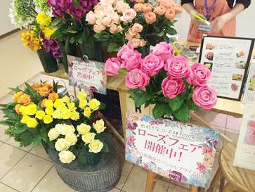 Flower_Blog_2016042101.jpg
