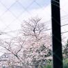 ドライビングレンジから見える風景-サムネイル