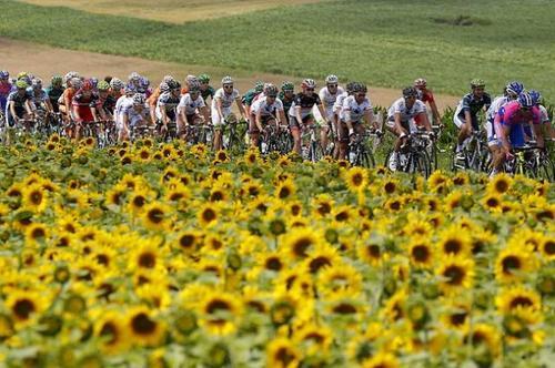 069098-tour-de-france-2012-stage-7.jpg