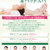 終了【期間延長】リフレクソロジー&ヘッドスパ(〜4/16)-サムネイル