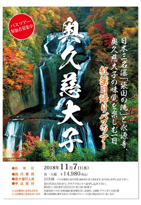 紅葉日帰りバスツアー_20181107_ポスター.jpg