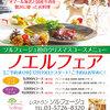 【終了】ソルフェージュ ノエルフェア(12/19〜12/25)-サムネイル