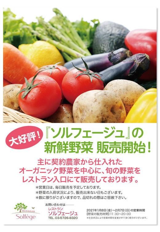 野菜販売はじめました_20210108.jpg